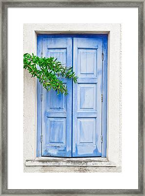 Blue Shutter Framed Print by Tom Gowanlock