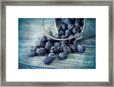 Blueberries Framed Print by Darren Fisher
