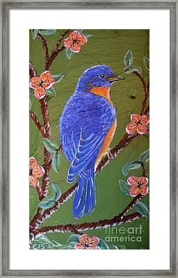 Bluebird Framed Print by Cecilia Stevens
