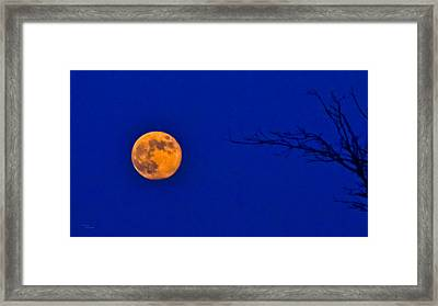 Bluemoon Framed Print