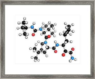 Boceprevir Hepatitis C Virus Drug Framed Print by Molekuul