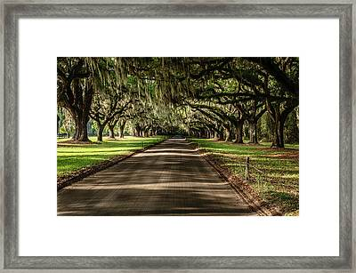 Framed Print featuring the photograph Boone Plantation Road by John Johnson