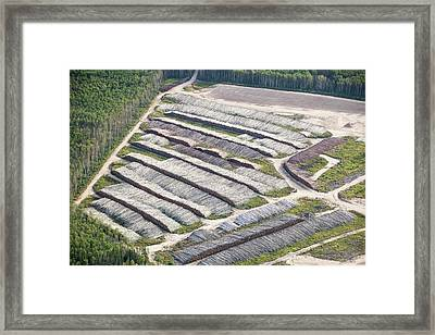 Boreal Forest Felled For A Tar Sands Mine Framed Print