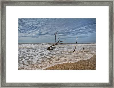 Botany Bay Beach Framed Print