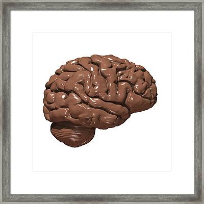Brain Made Of Chocolate Framed Print by Russell Kightley