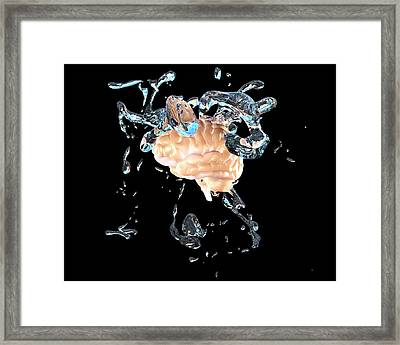 Brainwashing Framed Print by Christian Darkin