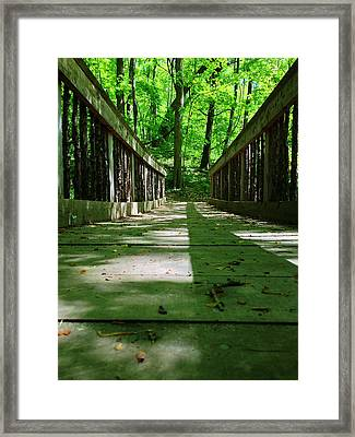 Bridge In The Woods Framed Print by Andrew Martin