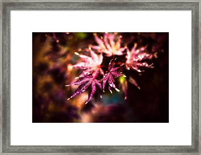 Bright Leaves Framed Print