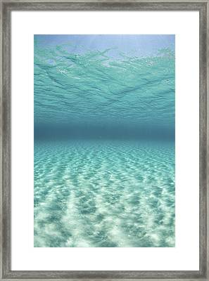 Bright Sunlight Ripples Framed Print by Ethan Daniels
