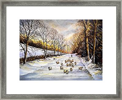 Bringing Home The Sheep Framed Print