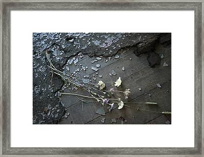 Broken Promises Framed Print