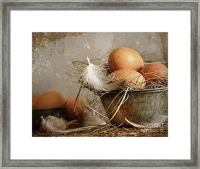 Brown Speckled Eggs  In Old Tin Bowl Framed Print by Sandra Cunningham