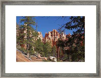 Bryce Canyon National Park Framed Print by Michael J Bauer