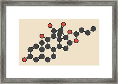 Budesonide Corticosteroid Drug Molecule Framed Print by Molekuul