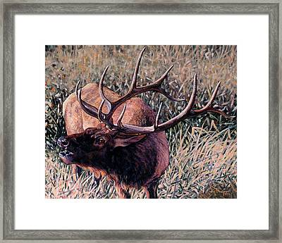 Framed Print featuring the painting Bugle Boy by Craig T Burgwardt