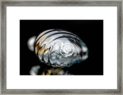 Bulb In Close-up Framed Print