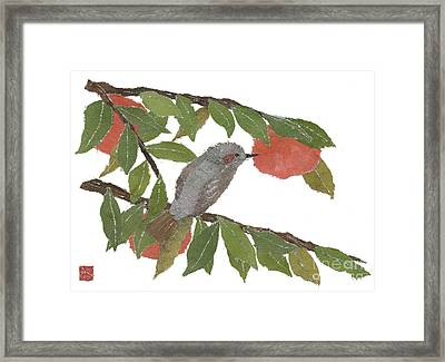 Bulbul And Persimmon  Framed Print by Keiko Suzuki