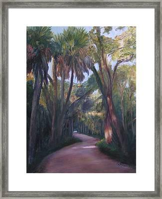 Bulow Creek Plantation Framed Print