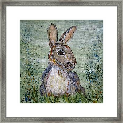 Bunny Rabbit Framed Print