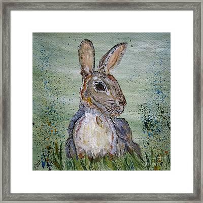 Bunny Rabbit Framed Print by Ella Kaye Dickey