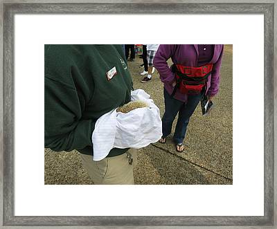 Busch Gardens - 01132 Framed Print by DC Photographer