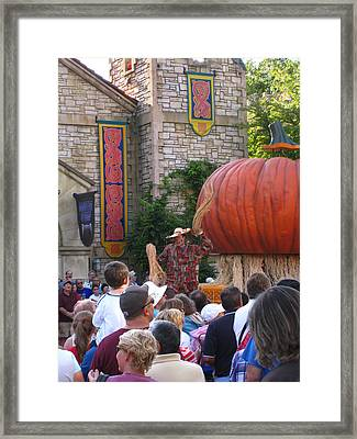 Busch Gardens - 121212 Framed Print by DC Photographer