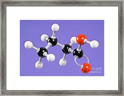 Butanoic Acid Framed Print by Martyn F. Chillmaid