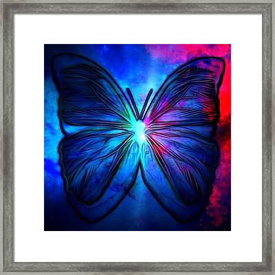 Butterfly Framed Print by T T
