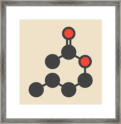 Butyl Acetate Molecule Framed Print by Molekuul
