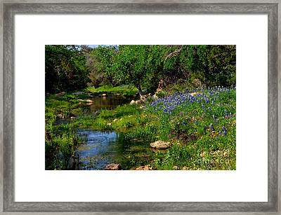 By The Stream Framed Print