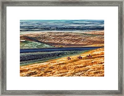 Cabbage Hill Pendleton Oregon Framed Print