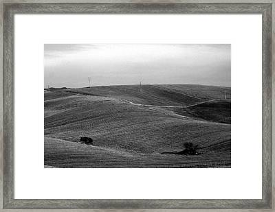 Trees Countryside Hills Framed Print