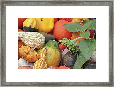 Canada, British Columbia, Keremeos Framed Print by Jaynes Gallery