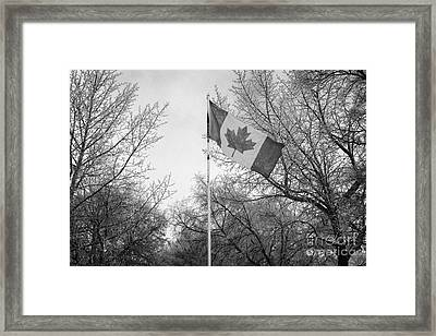 canadian flag flying with frost covered trees Forget Saskatchewan Canada Framed Print by Joe Fox