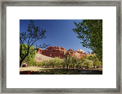 Capitol Reef Evening Framed Print by Michael J Bauer