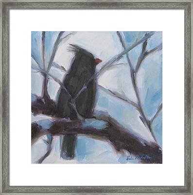 Cardinal Reposed Framed Print