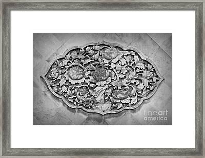 Carvings Framed Print