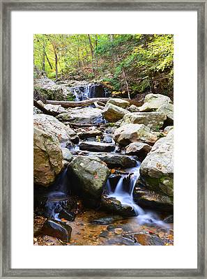 Framed Print featuring the photograph Cascade Falls by Dana Sohr