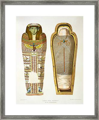 Case And Mummy In Its Cerements Framed Print by American School