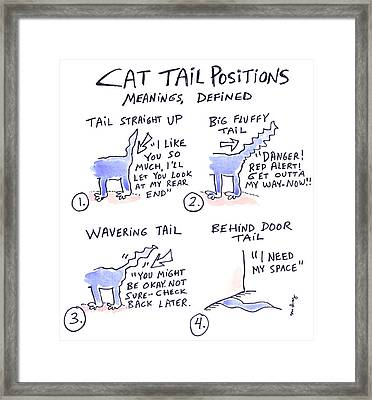 cat tail positions drawingmolly brandenburg