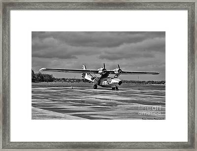 Catalina Framed Print by Tommy Anderson