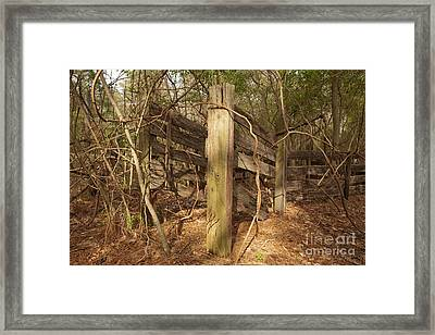 Catchpen Framed Print by Russell Christie