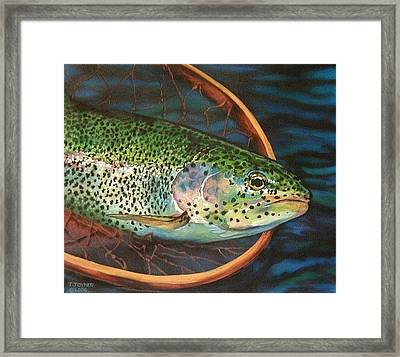 Caught On Canvas Framed Print