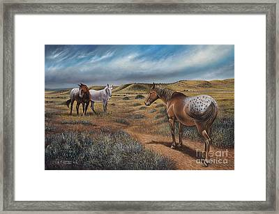 Cayuse Country Framed Print