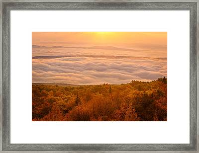 Framed Print featuring the photograph Changing Of Seasons by Bernard Chen