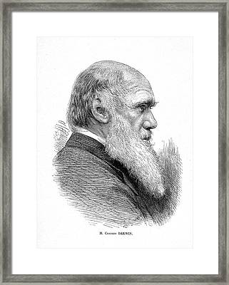 Charles Darwin Framed Print by Collection Abecasis