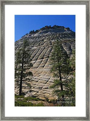 Checkerboard Mesa, Utah Framed Print by Gregory G. Dimijian, M.D.
