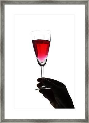 Cheers Framed Print by Svetlana Sewell