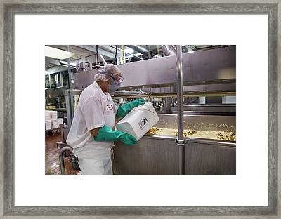 Cheese Factory Framed Print