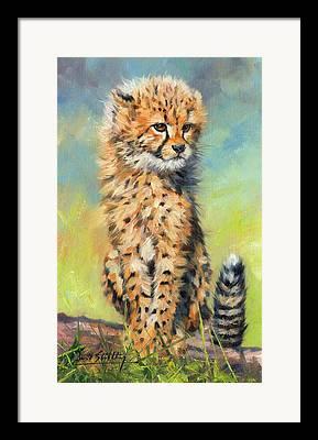 Serengheti Framed Prints